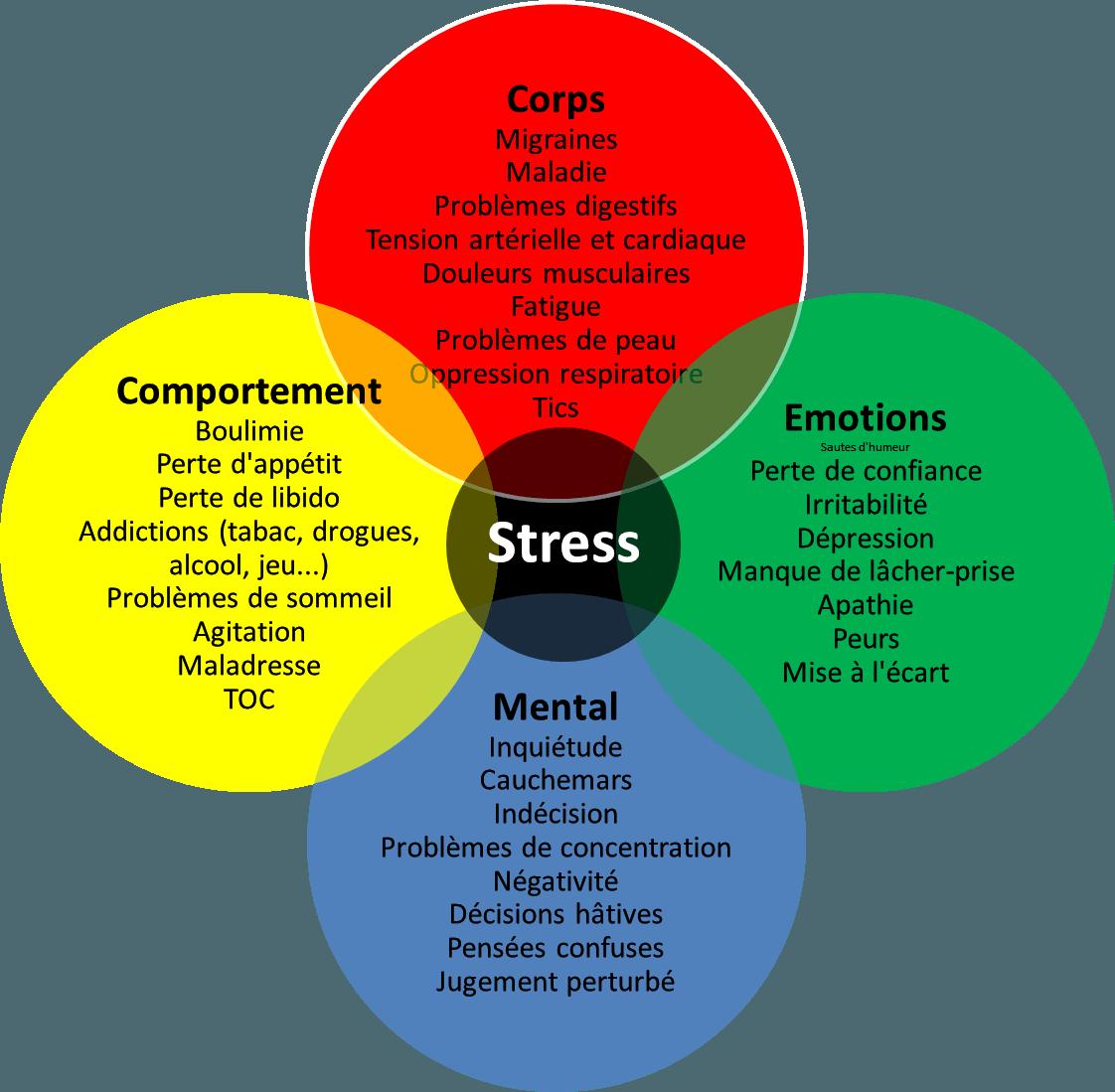Schéma des conséquences du stress - article Mikaël Cavalier, naturopathe